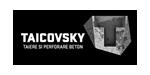 TAICOVSKY - Tăieri și carotări diamantate