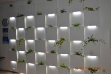 Punct decorativ cu led lumina rece si gradini verticalei